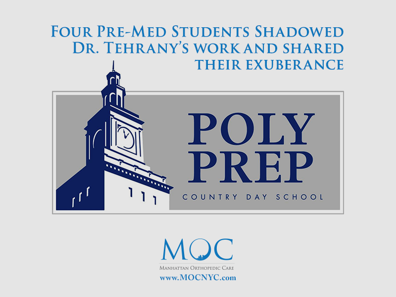 poly prep internship program